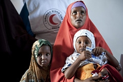 Red Cross helps reconnect families from Somalia