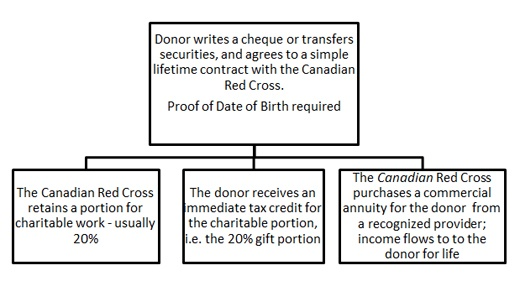 How a Charitable Gift Annuity Works