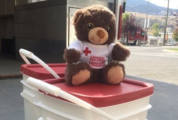 One of the Red Cross teddy bears